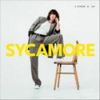 """Drew Sycamore - """"Jungle"""""""